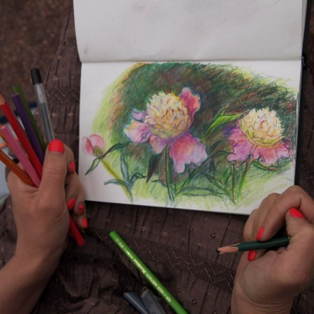 Рисуем цветы в Ботаническом саду «Цветы в природе»